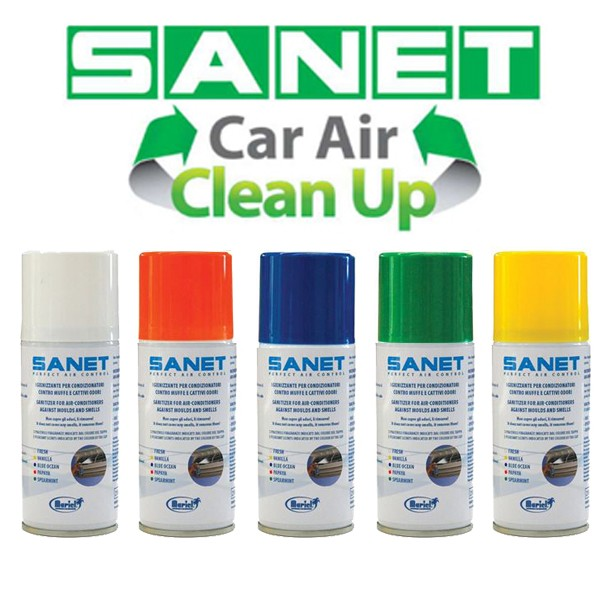 Sanet Car Air Conditioning Sanitizer At Discount Price